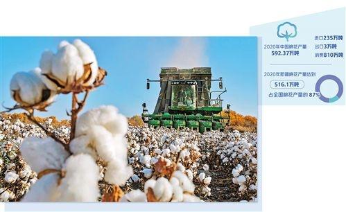 中国棉花稳产销树标准
